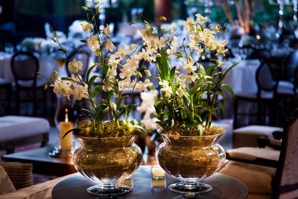 decoração casamento branco e verde disegno