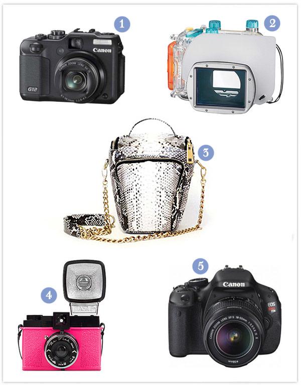 câmeras fotógraficas lua-de-mel