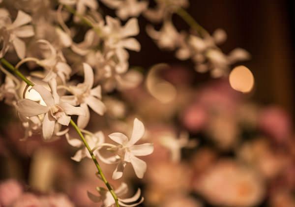decoracao-casamento-flor-e-forma-003