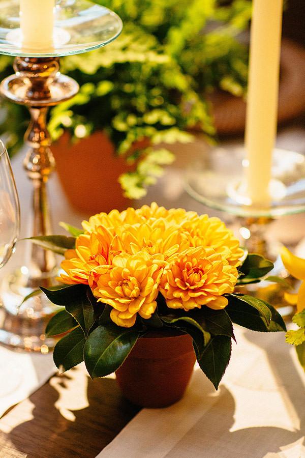 jantar-casamento-decoracao-lais-aguiar-manioca-6