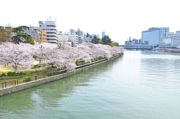 Passeios-Bairro-e-Parque-Ueno
