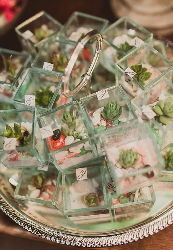casamento-rio-de-janeiro-foto-marina-lomar-lembrancinhas-suculentas-terrario
