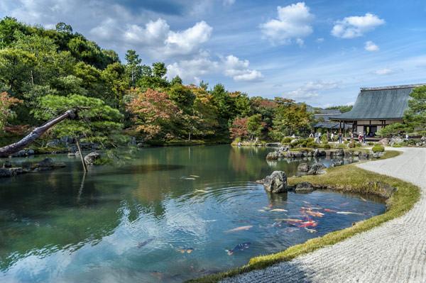 lua-de-mel-teresa-perez-japao-kyoto-passeios-Arashiyama
