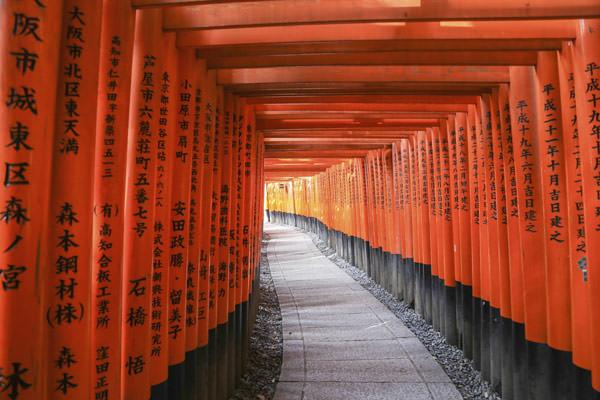 lua-de-mel-teresa-perez-japao-kyoto-passeios-Santuario-Xintoista-Fushimi-Inari