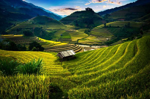 lua-de-mel-teresa-perez-Vietnam-1