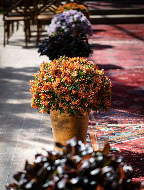 decoracao-casamento-patricia-vaks-rio-de-janeiro-3