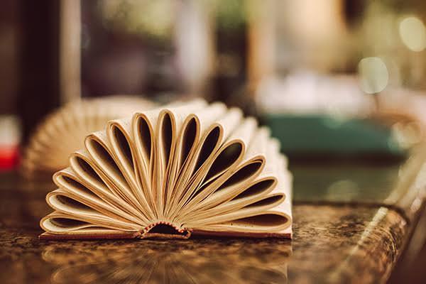 casamento-rio-de-janeiro-confeitaria-colombo-foto-loveshake-32